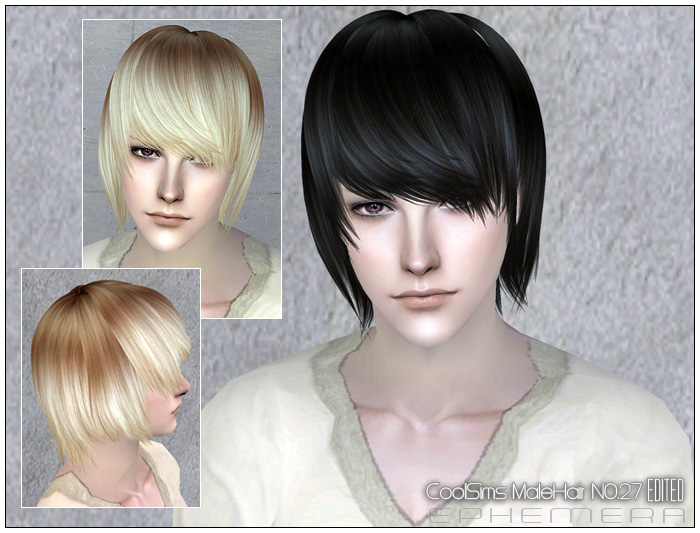 (Downloads -> Hairstyles -> Hair 27) Peggy Free male hair NO.090601