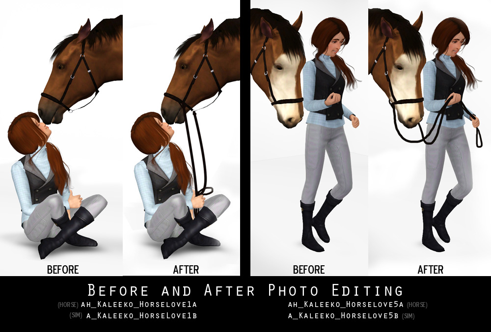 The Sims 3 Palace: Horse Poses