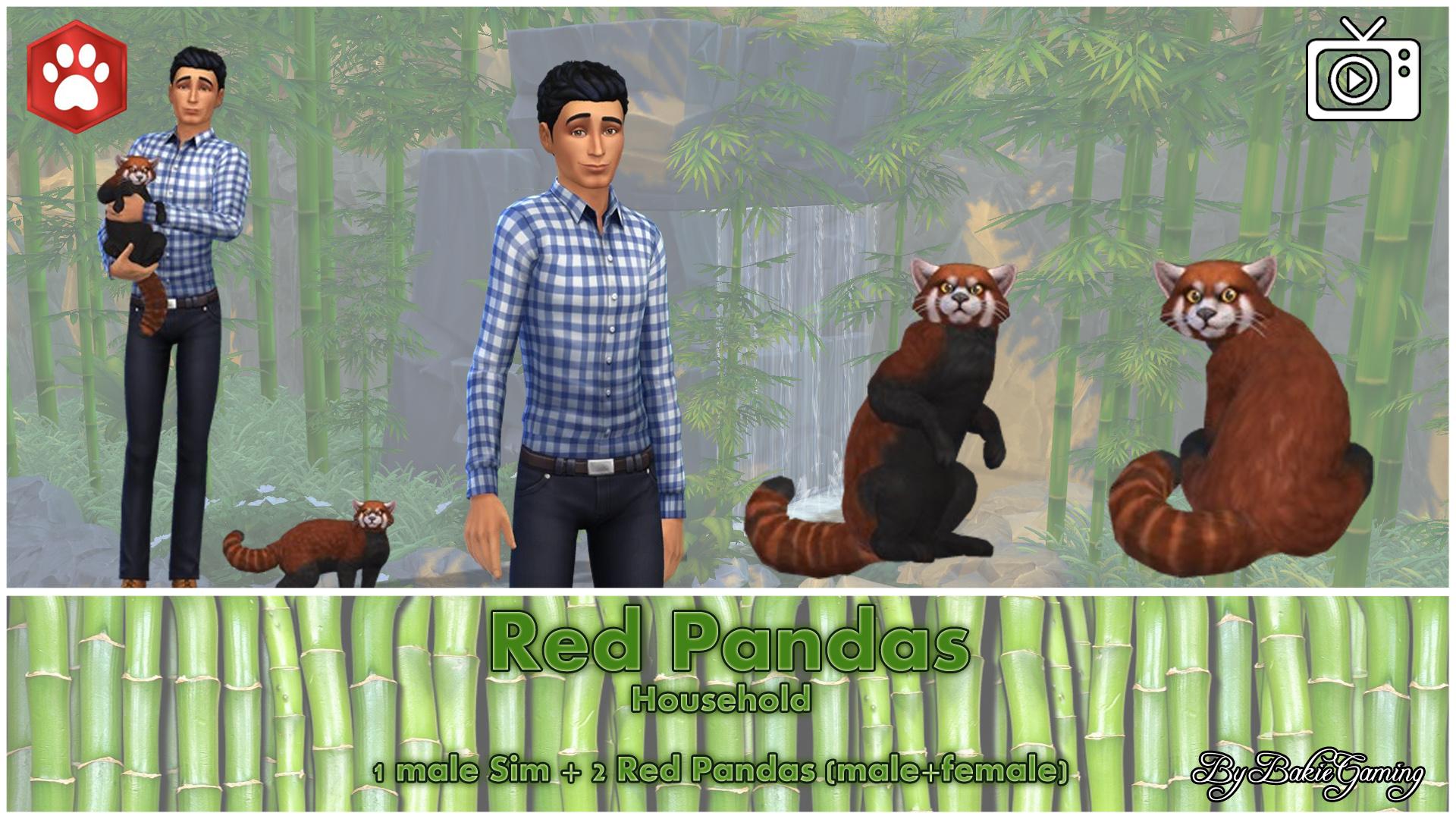 Mod The Sims - Red Panda (Cat)