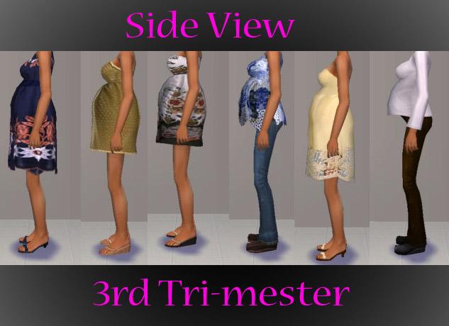 Mod The Sims -