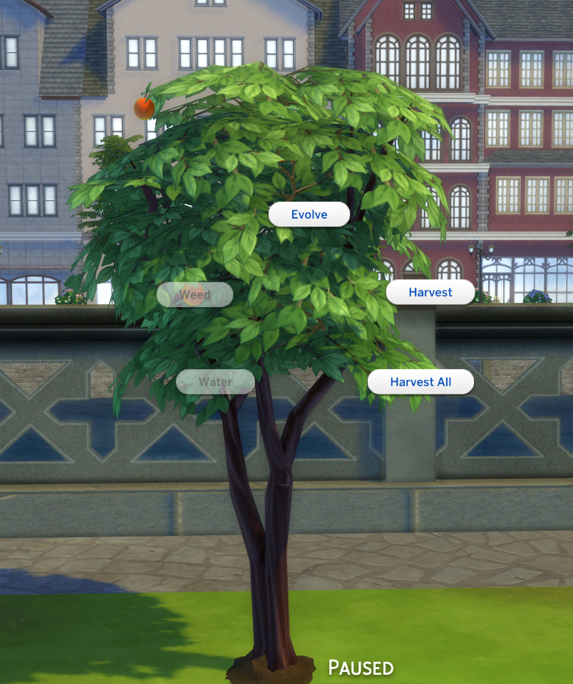 Mod The Sims - Harvestable Peach Tree [Updated 18th July 2018]