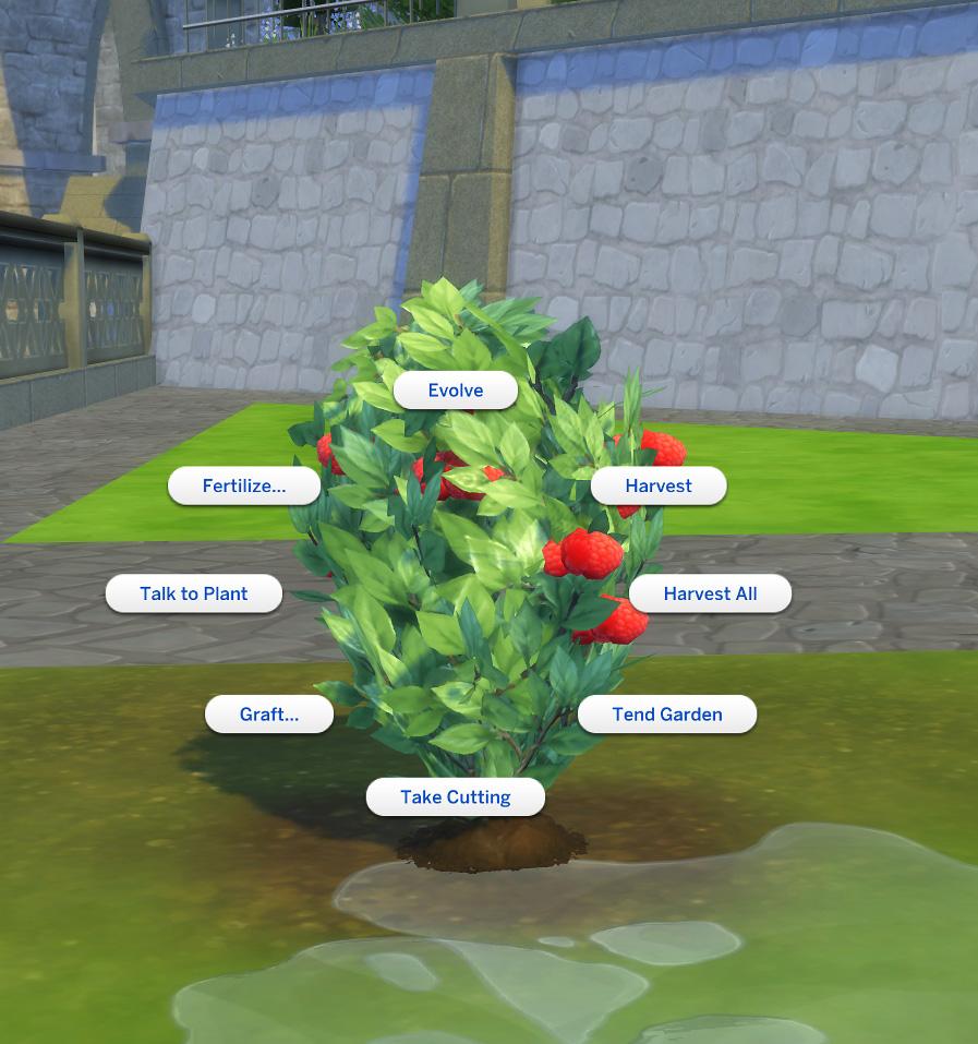 Mod The Sims - Harvestable Raspberry Plant [Updated 9 Nov 2017]