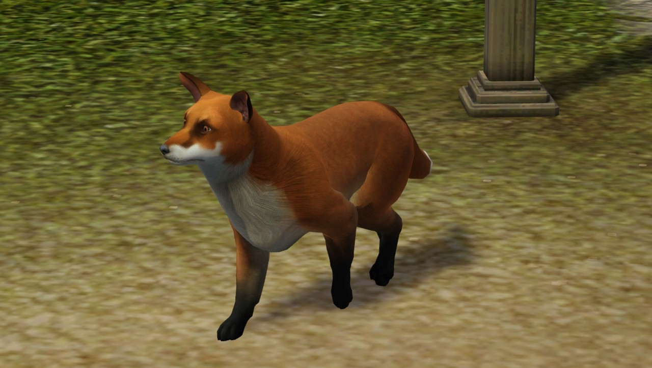 The Sims  Dogs And Cats Fox