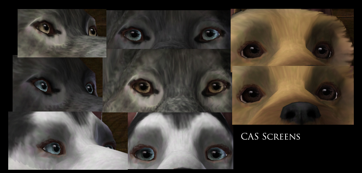 Mods For The Sims Cats And Dogs