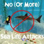 [Descarga]No ataques bajo el agua MTS_thumb_scarletqueenkat-1371403-sealifeattack