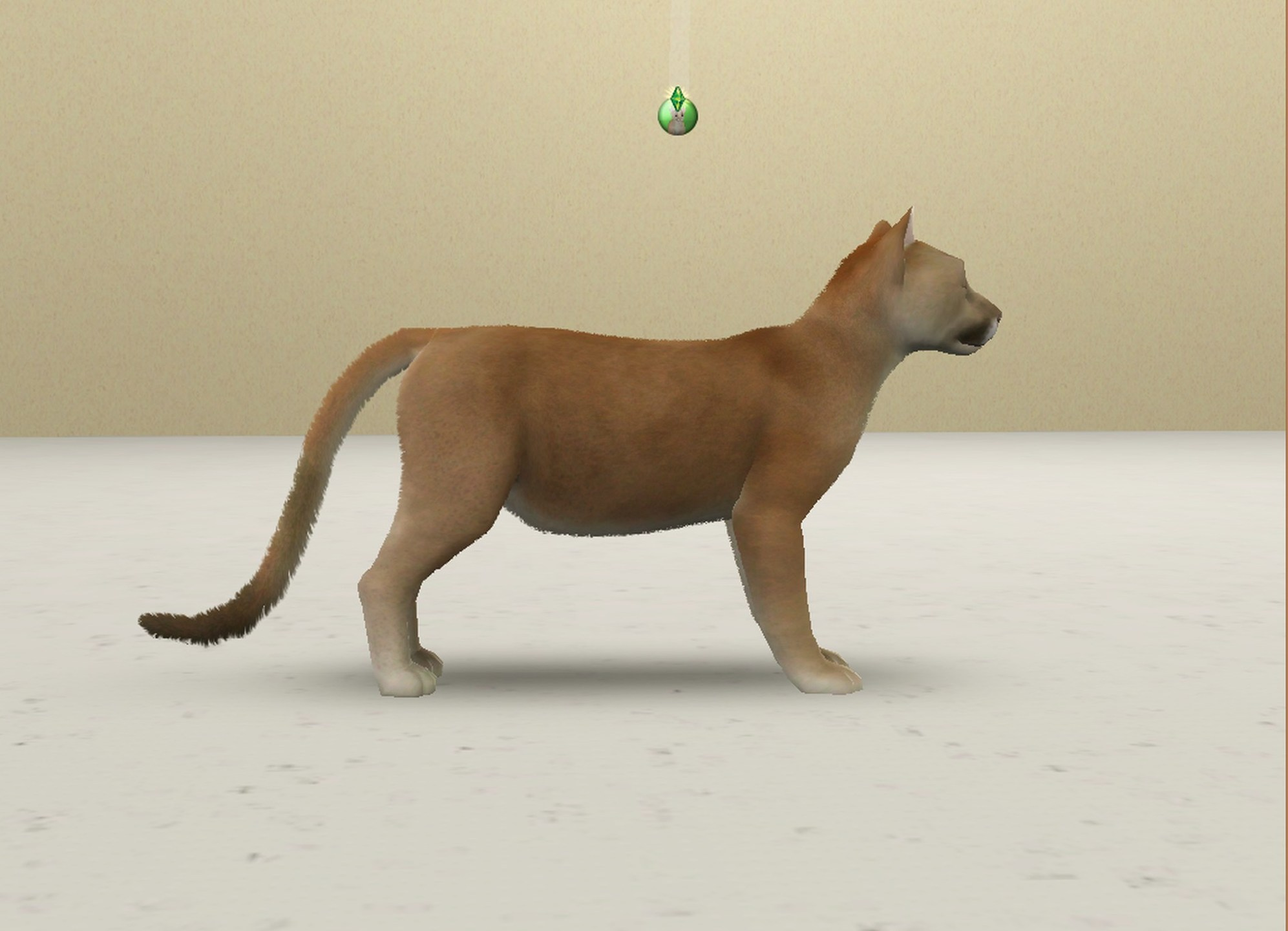 Sims  Cats And Dogs Lynx Point
